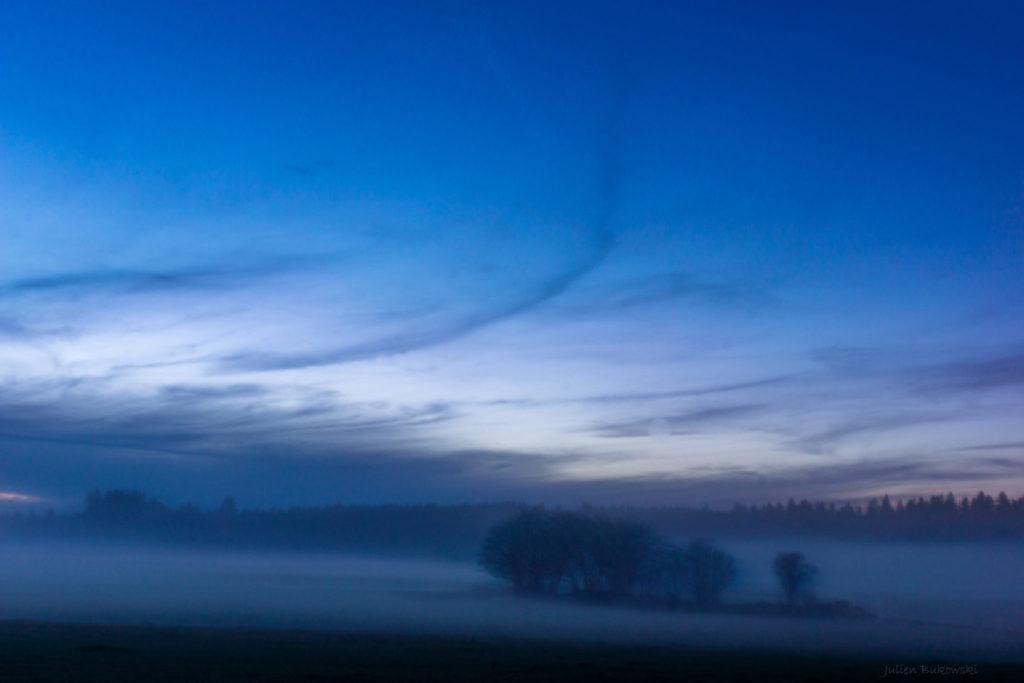 Foggy (Suisse)