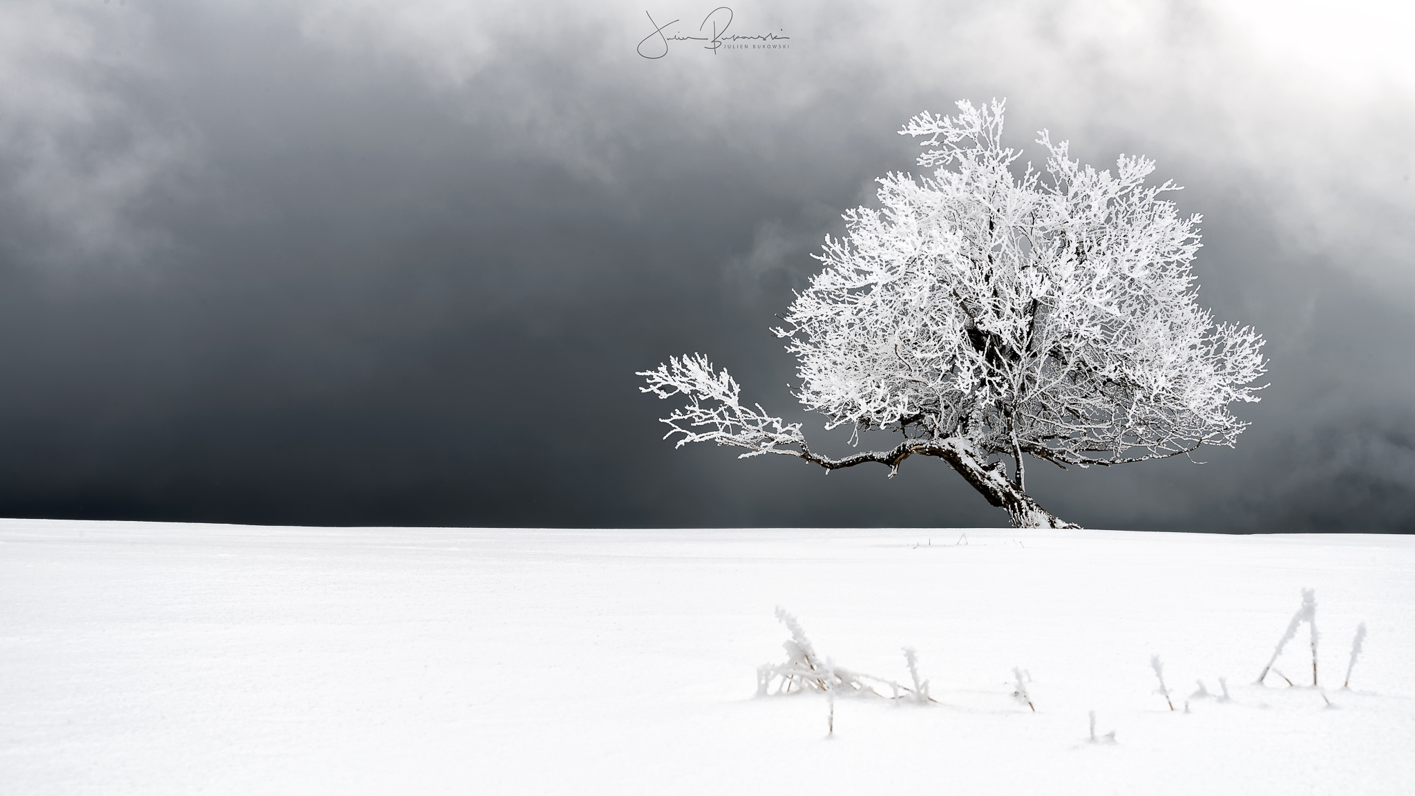 Blanc (Creux du Van – Suisse)