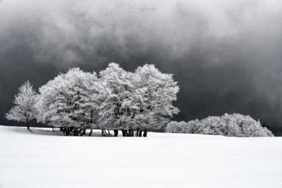 White spaces (Creux du Van – Suisse)