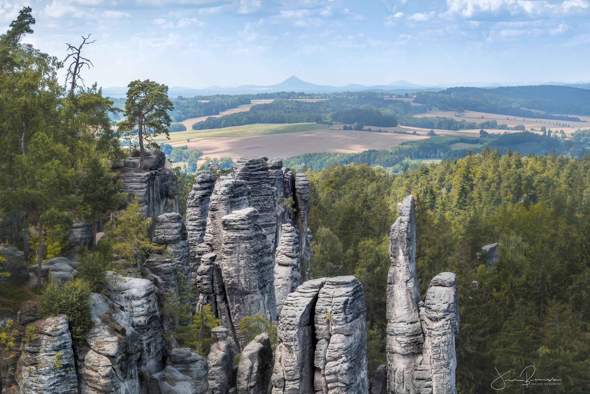 Prachovske Skaly-République Tchèque-Tchéquie-Canyon tchèque-arbres-réserve naturelle-rochers-tirage photo-Julien Bukowski
