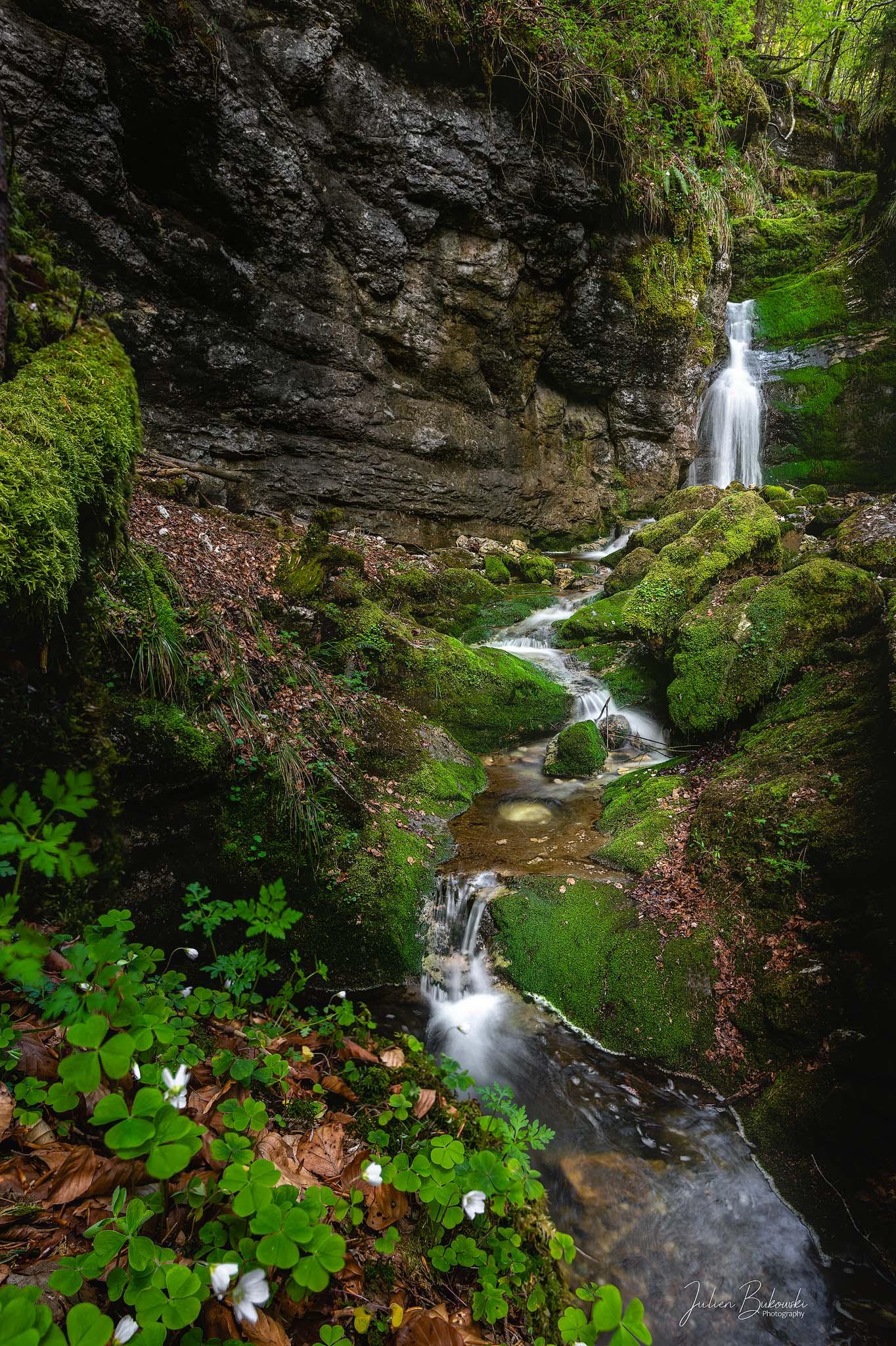 La tortueuse (Gorges de la Poeta Raisse - Suisse)