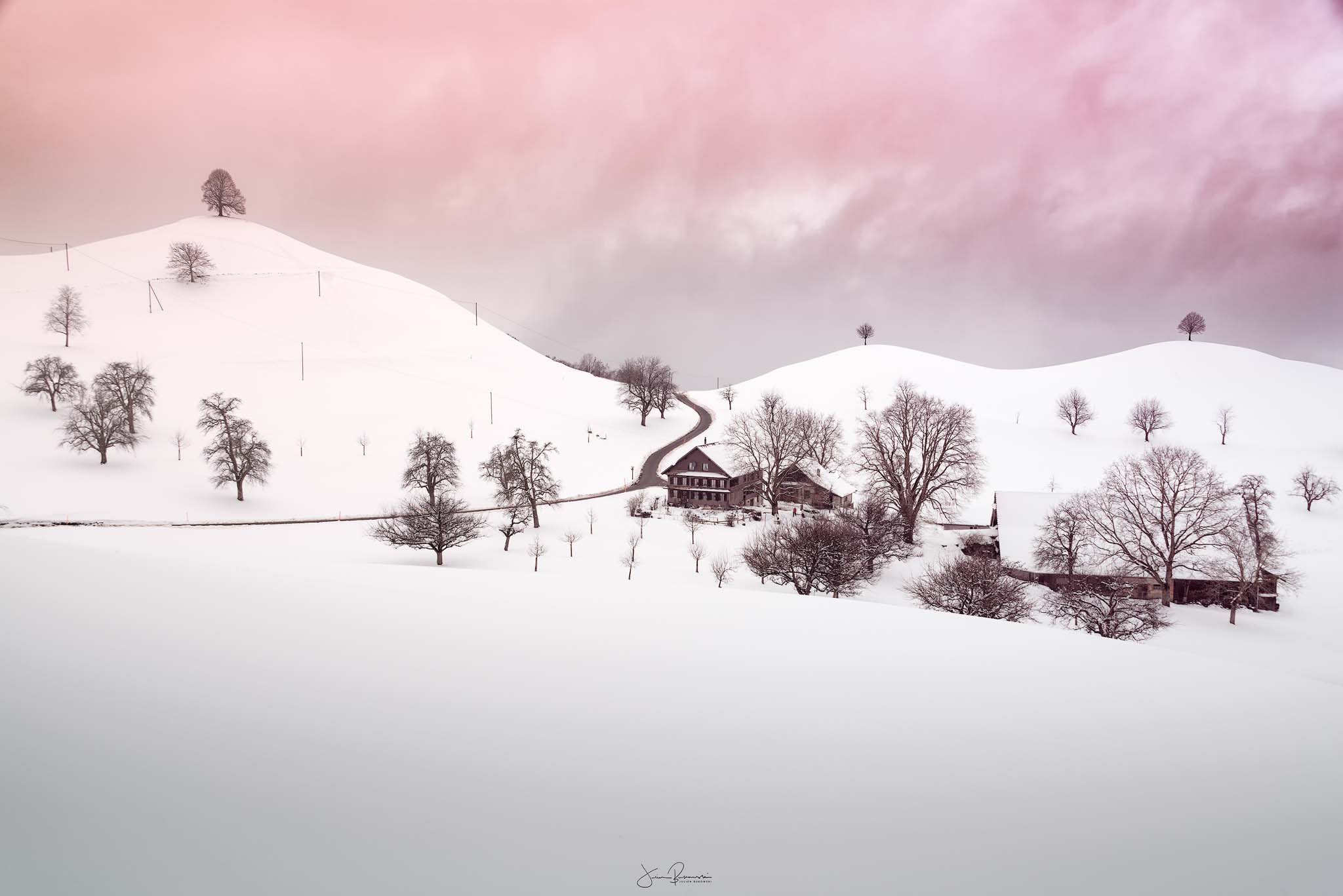 Paradise in winter (Zoug - Suisse)