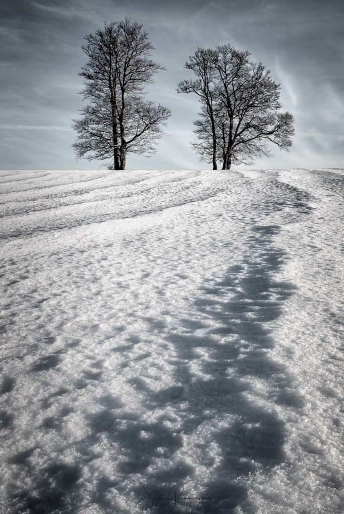 Fear of the snow (Creux du Van - Suisse)