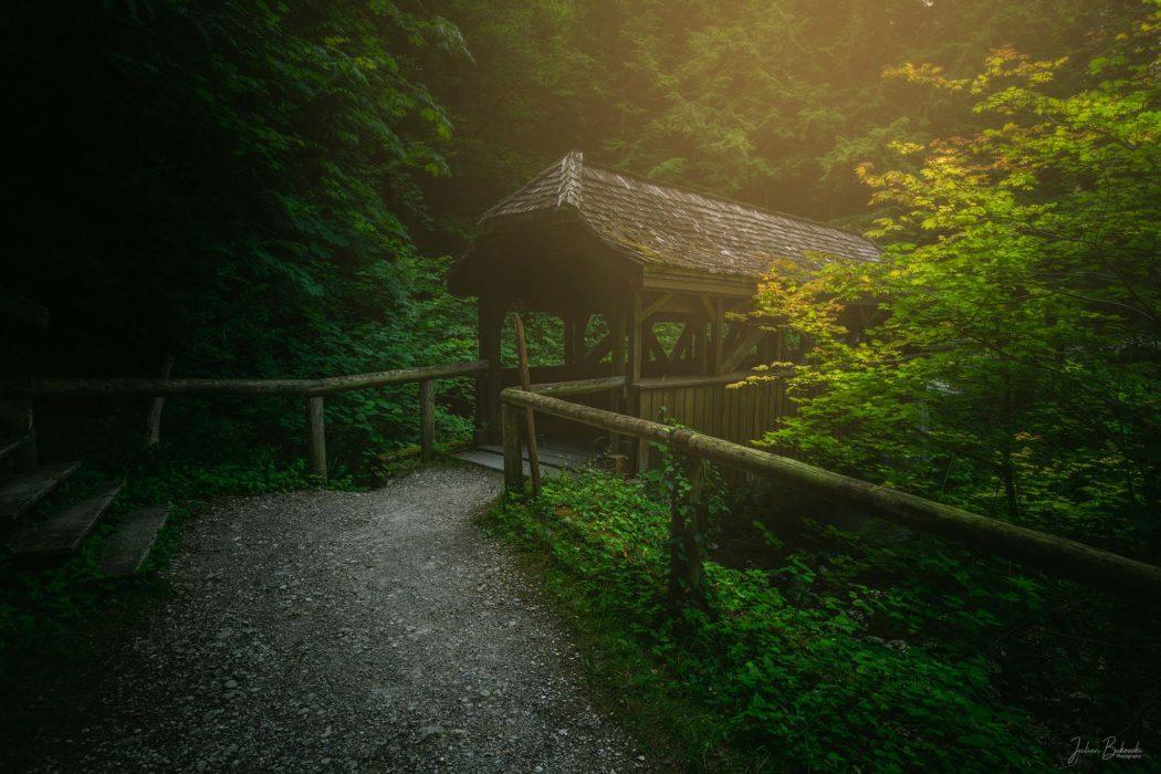 Wooden Bridge (Aubonne - Suisse)