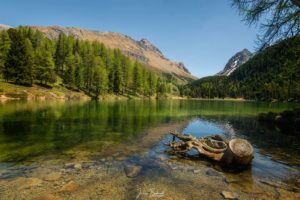 Green lake (Grisons - Suisse)