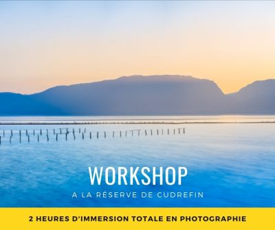 Workshop photo réserve de Cudrefin